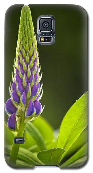 Lupin Bud Galaxy S5 Case