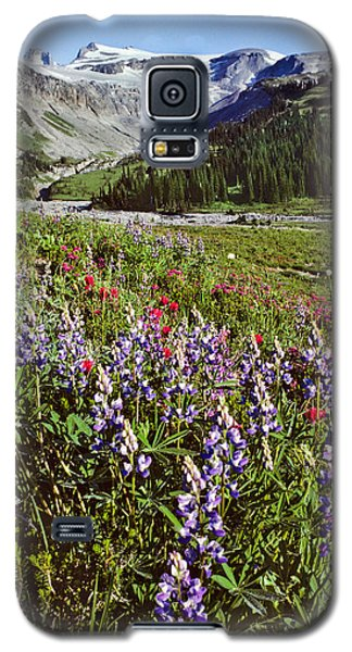 Galaxy S5 Case featuring the photograph Lupine And Paintbrush Blooming At Indian Bar by Jeff Goulden
