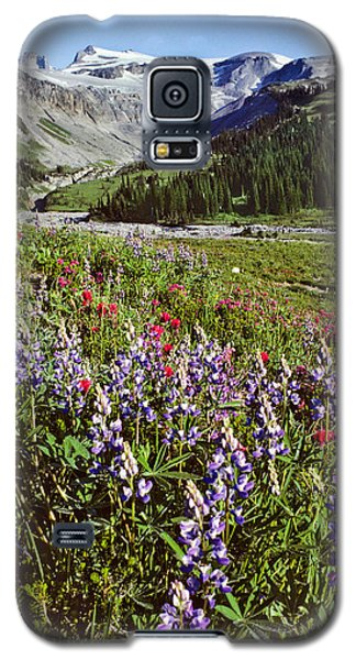 Lupine And Paintbrush Blooming At Indian Bar Galaxy S5 Case by Jeff Goulden