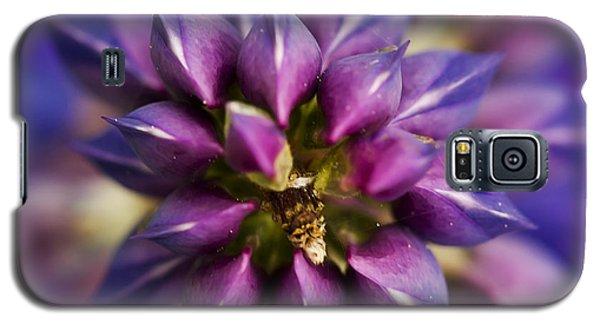 Lupine Kaleidoscope Galaxy S5 Case