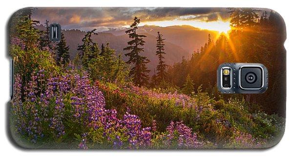 Lupine Meadows Sunstar Galaxy S5 Case