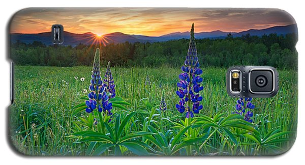 Lupine Sunrise Galaxy S5 Case