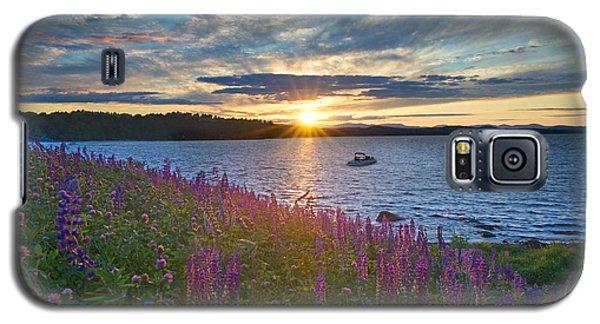 Lupine Sunset On Long Lake Galaxy S5 Case