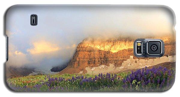Lupine Wildflowers On Mount Timpanogos Galaxy S5 Case