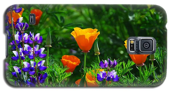 Lupines And Poppies Galaxy S5 Case
