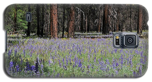 Galaxy S5 Case featuring the photograph Lupines In Yosemite Valley by Lynn Bauer