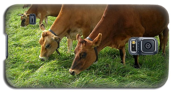 Luscious Grass For Delicious Milk Galaxy S5 Case