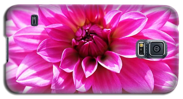 Galaxy S5 Case featuring the photograph Lush Pink Dahlia by Judy Palkimas