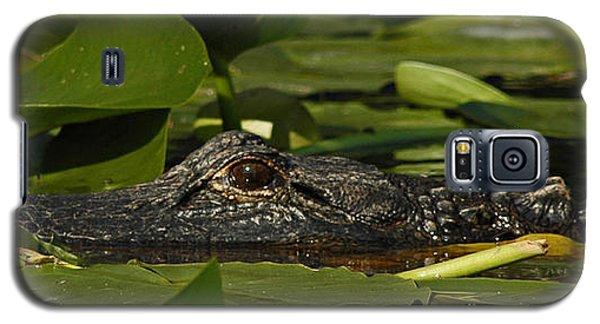 Lying In Wait Galaxy S5 Case by Vivian Christopher