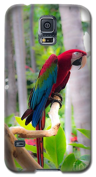 Galaxy S5 Case featuring the photograph Macaw by Angela DeFrias