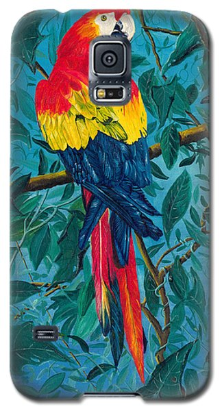 Macaw Galaxy S5 Case