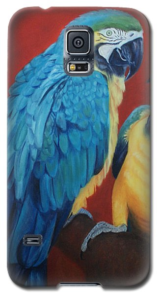Macaws   Galaxy S5 Case