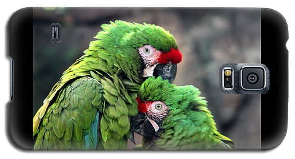 Macaws In Love Galaxy S5 Case by Diane Merkle