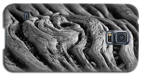 Galaxy S5 Case featuring the photograph Macro 1 by Mariusz Czajkowski