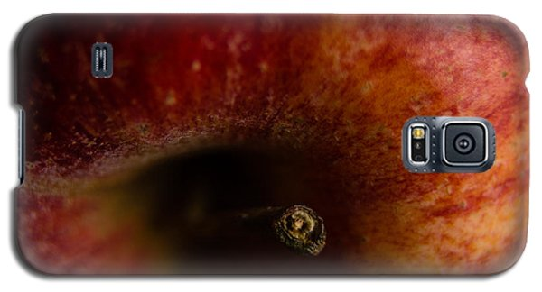 Galaxy S5 Case featuring the photograph Macro Apple by Erin Kohlenberg