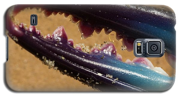 Galaxy S5 Case featuring the photograph Macro Crab Claw by Patricia Schaefer