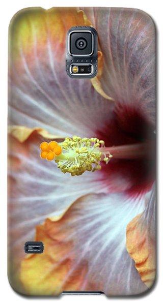 Macro Hibiscus Galaxy S5 Case