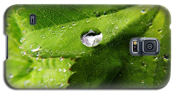 Macro Raindrop On Leaf Galaxy S5 Case by Karen Horn