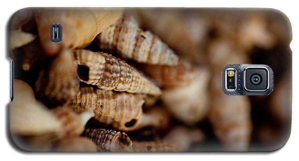 Galaxy S5 Case featuring the photograph Macro Shells by Carole Hinding