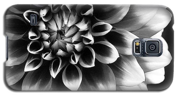 Mad About You Galaxy S5 Case by Kathi Mirto