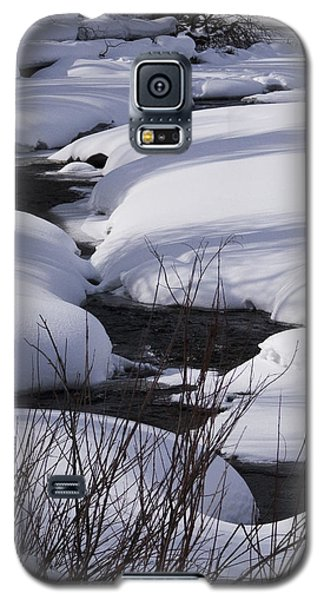 Mad Creek Winter At Elk Confluence Galaxy S5 Case by Daniel Hebard