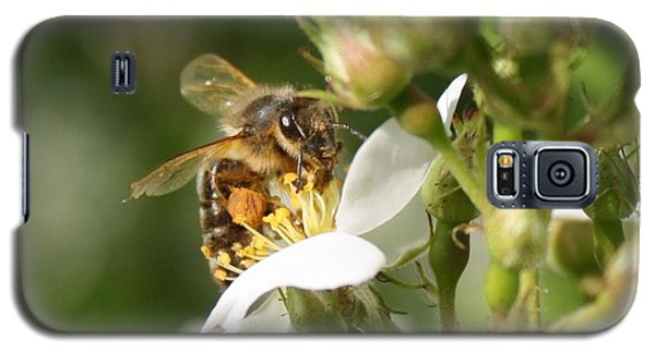Mad Honeybee Galaxy S5 Case