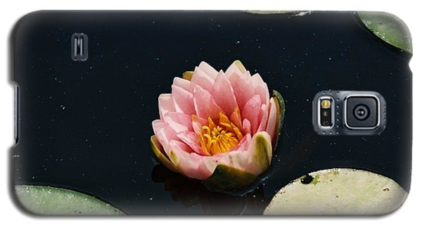 Galaxy S5 Case featuring the photograph Madam Wilfron Gonnere Aka. Water Lily by Ramona Whiteaker