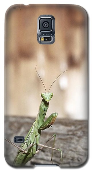 Madame Mantis Galaxy S5 Case