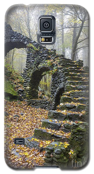 Madame Sherri Forest - Chesterfield New Hampshire Usa Galaxy S5 Case