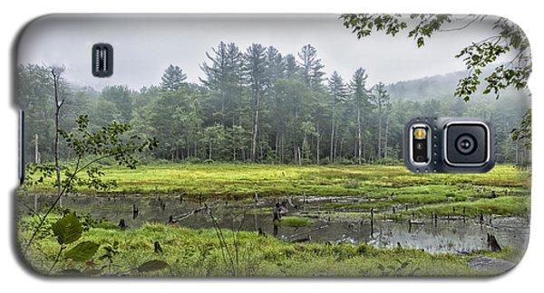 Madame Sherri Summer Pond Galaxy S5 Case
