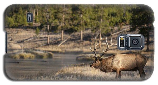 Madison River Elk Galaxy S5 Case
