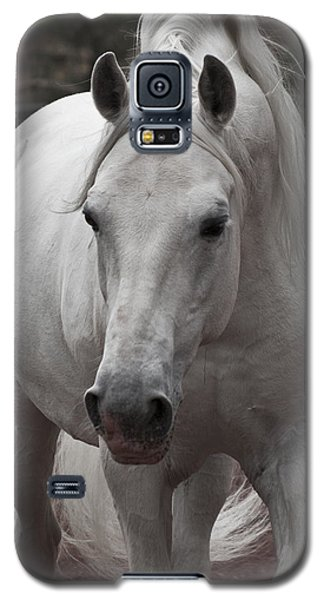 Galaxy S5 Case featuring the photograph Maestoso II Ambrosia D5881 by Wes and Dotty Weber