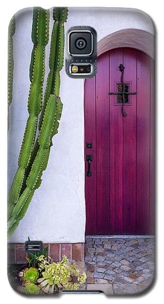 Magenta Door Galaxy S5 Case