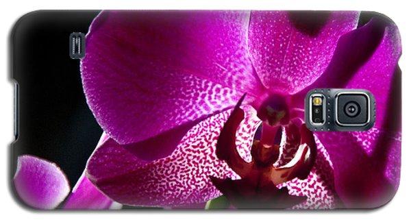 Magenta Orchid Galaxy S5 Case