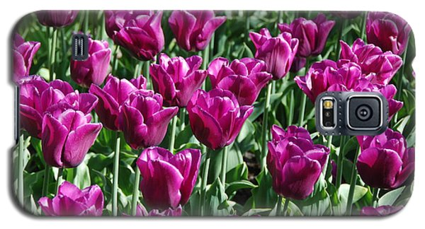 Galaxy S5 Case featuring the photograph Magenta Tulips by Allen Beatty