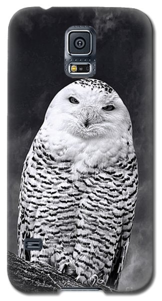 Magic Beauty - Snowy Owl Galaxy S5 Case