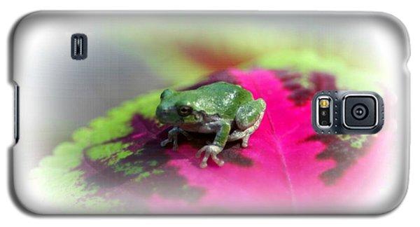 Magic Carpet Coleus Leaf Galaxy S5 Case