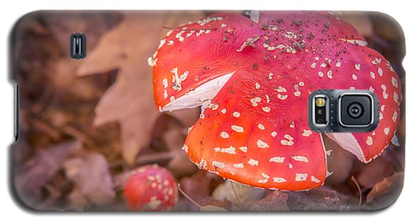Magic Mushroom Galaxy S5 Case