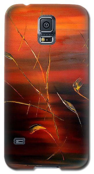 Magic Of Colours 3 Galaxy S5 Case by David Hatton