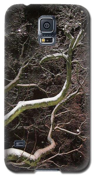 Magic Tree Galaxy S5 Case
