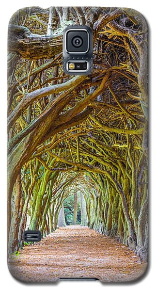 Magic Yew Galaxy S5 Case