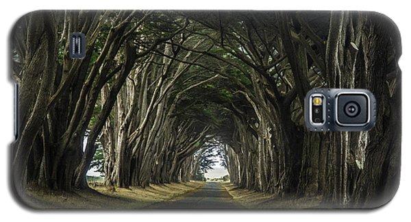 Magical Galaxy S5 Case