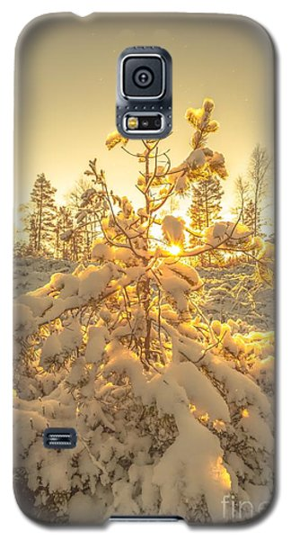 Magical Moments In The Middle Of January Galaxy S5 Case by Rose-Maries Pictures