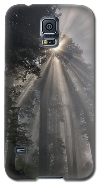 Magical Morning Galaxy S5 Case by Betty Depee