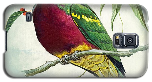 Magnificent Fruit Pigeon Galaxy S5 Case by Bert Illoss