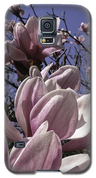 Magnificent Magnolia Galaxy S5 Case