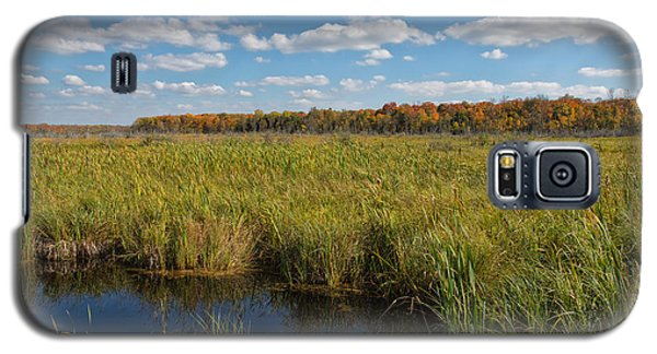 Magnificent Minnesota Marshland Galaxy S5 Case