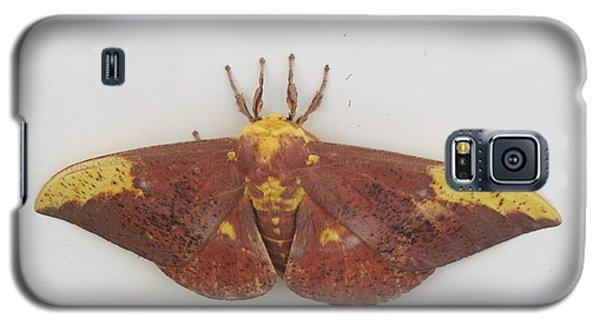 Magnificent Moth Galaxy S5 Case