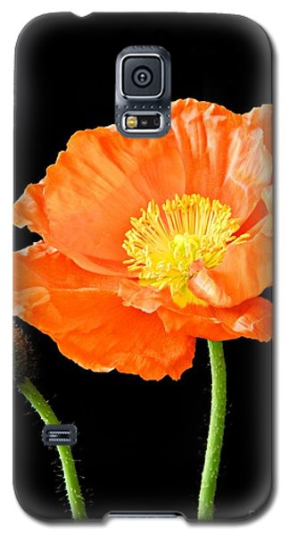 Magnificent Simplicity  Galaxy S5 Case
