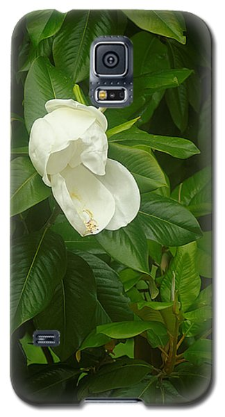 Galaxy S5 Case featuring the photograph Magnolia 1 by Suzanne Powers